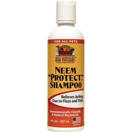 """Ark Naturals, 楝樹 """"保護"""" 洗髮水, 8 fl oz, 237 ml"""