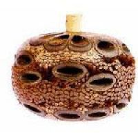 Banksia 山龍眼香薰瓶