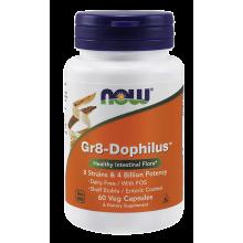 NOW Foods, Gr8-Dophilus, 60 Caps